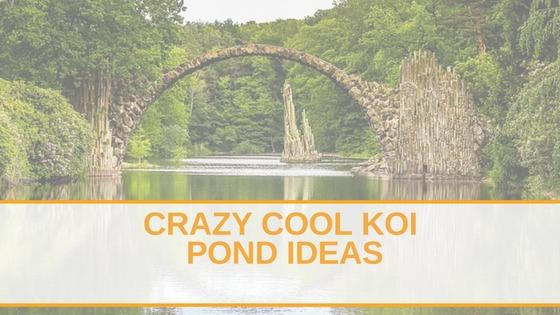 Crazy Cool Koi Pond Ideas