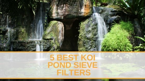5 Best Koi Pond Sieve Filters