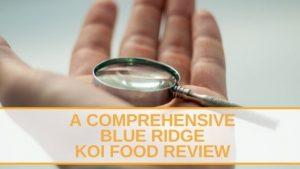A Comprehensive Blue Ridge Koi Food Review