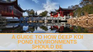 how deep koi pond