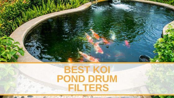Best Koi Pond Drum Filters