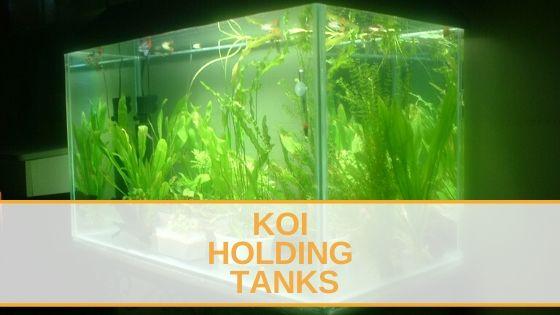 Koi Holding Tanks