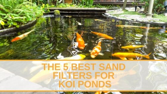 The 5 Best Sand Filters for Koi Ponds