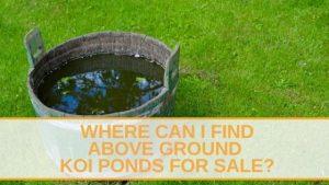 Above Ground Koi Ponds for Sale