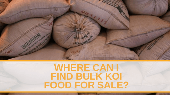 bulk koi food for sale