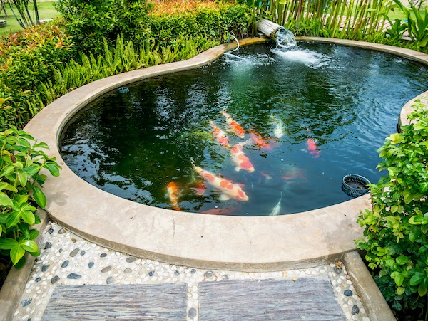 Your Guide to Koi Pond Decorations