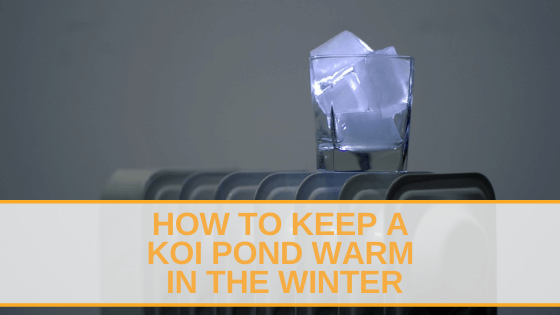 how to keep a koi pond warm in the winter